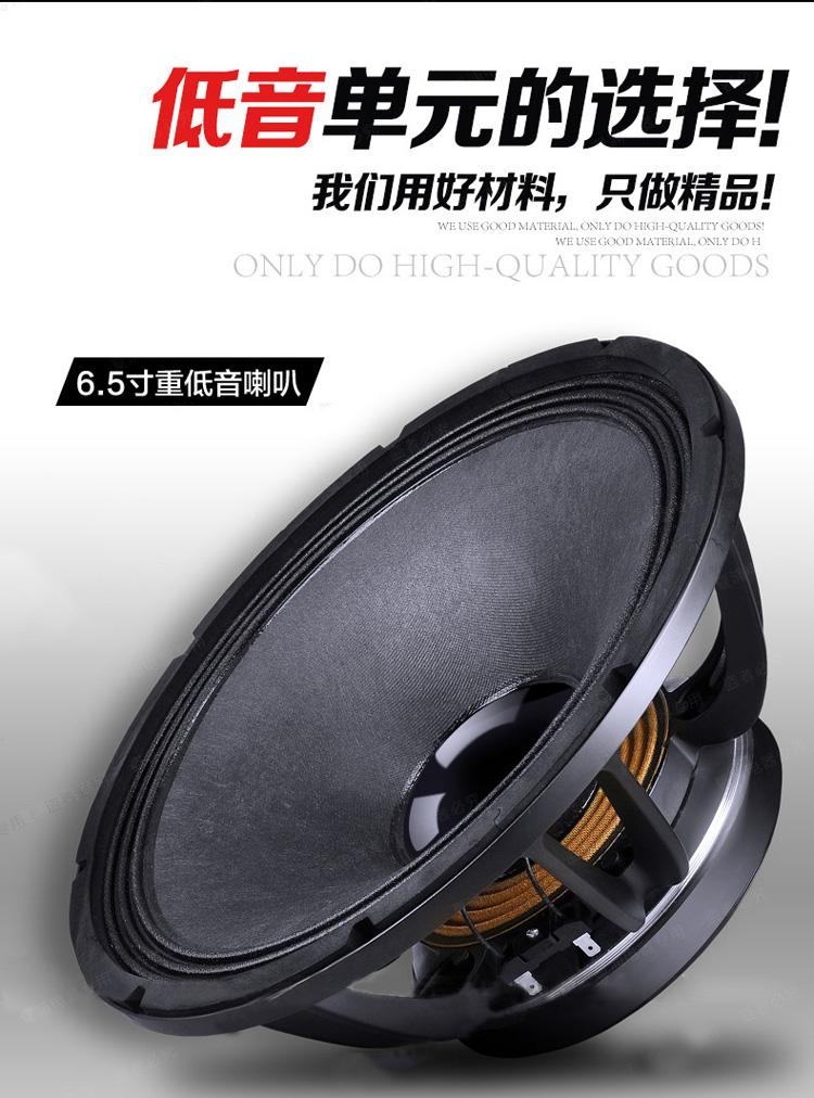 先科(sast)专业卡拉ok套装音响sa-880 6.