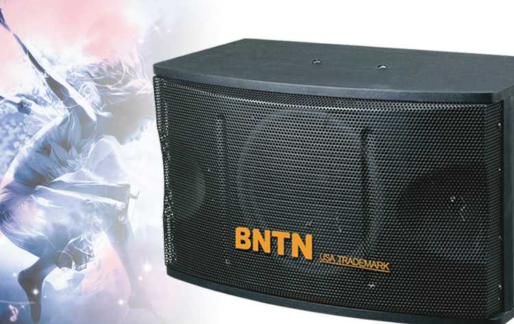 奔腾(bntn)卡拉ok600音箱(黑色)