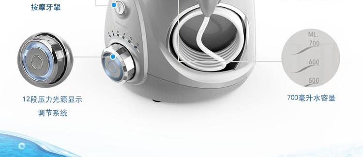 健适宝(waterpulse)v660冲牙器(亮银)
